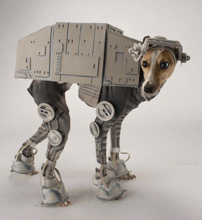animal-costume-04