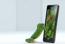 FrogTV