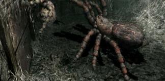 araignée géante au plafond