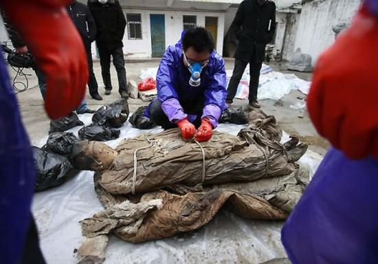 Une tombe de 700 ans-9