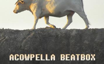 Acowpella Beatbox