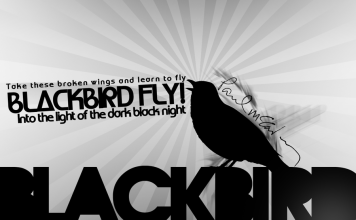 Blackbird des Beatles