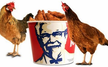 Kentucky-Fried-Chicken