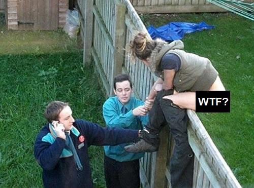 images les plus WTF du web