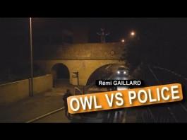 Owl Vs Police