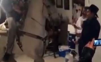 Un cheval danse dans une maison