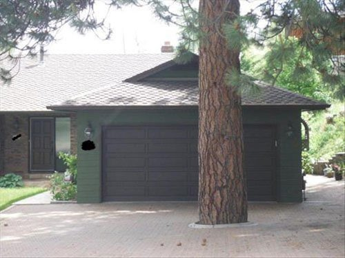 tree-infront-of-garage-L