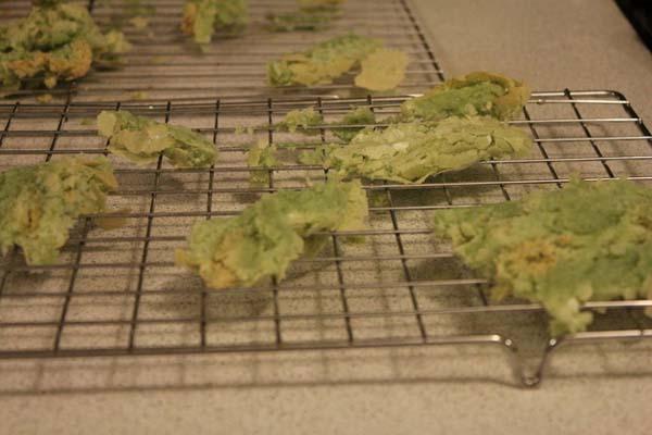 cooking-fails29-L