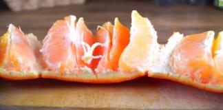 orange_0