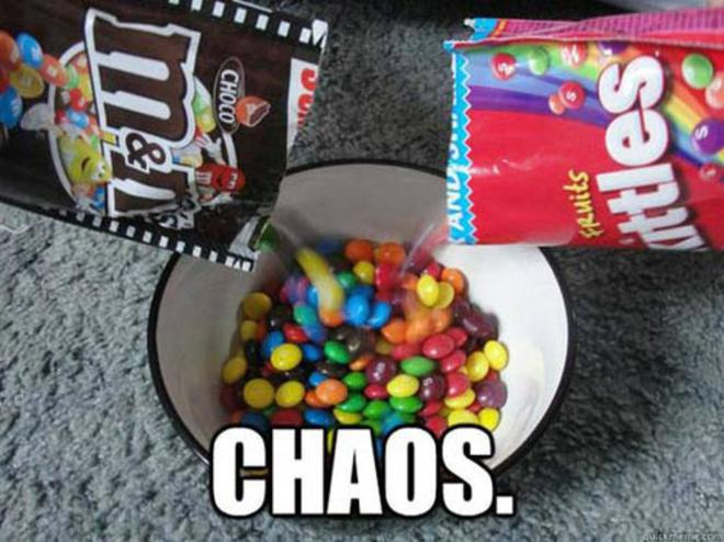 funniest-pictures-2013-chaos-L