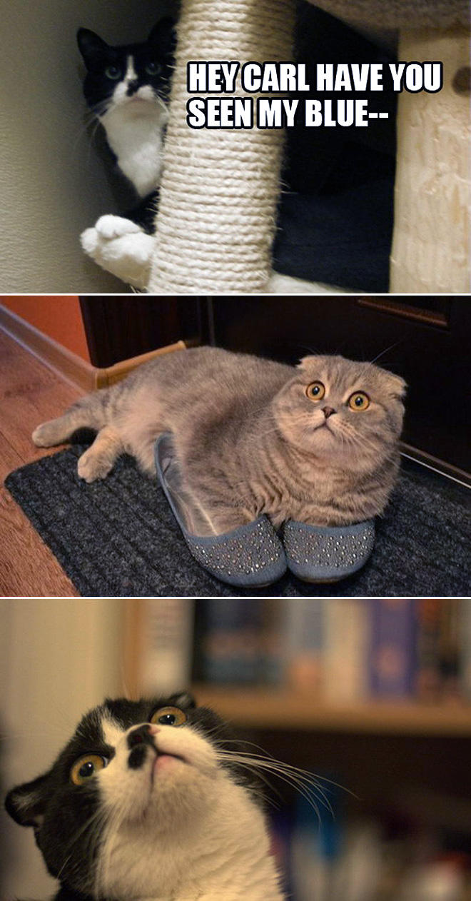 slippers-L