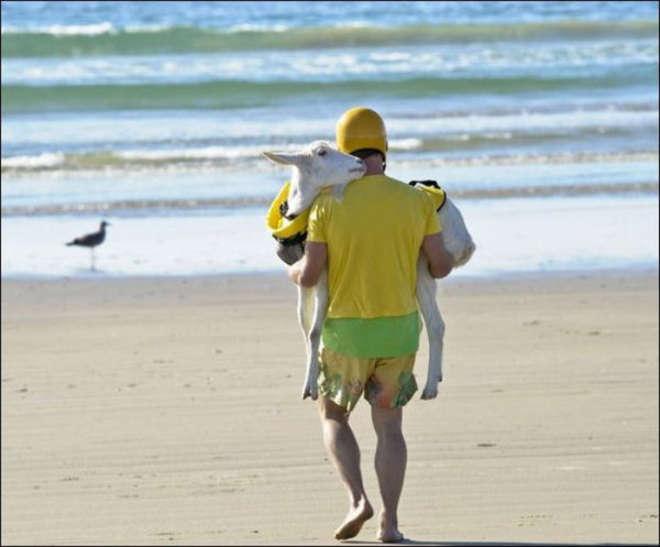 beach-pictures-0005-L.jpg