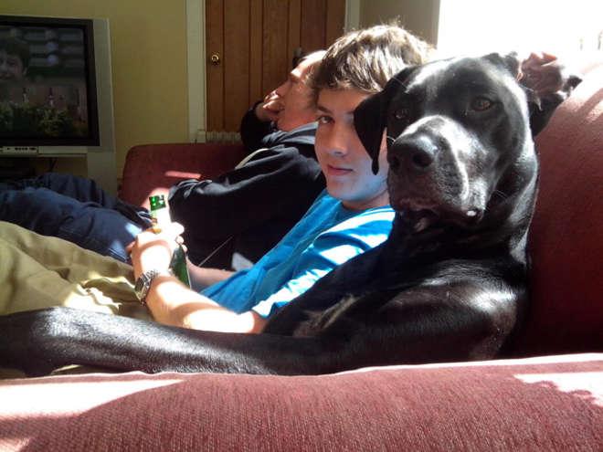 chiens-meilleurs-amis-de-l-homme-14-L.jpg