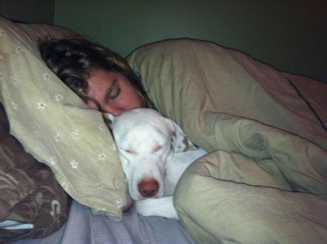 chiens-meilleurs-amis-de-l-homme-18-L.jpg