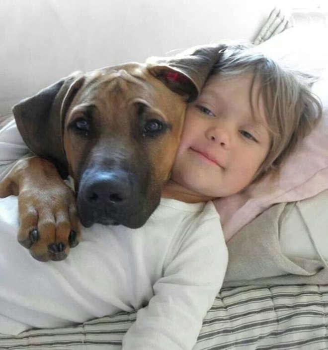 chiens-meilleurs-amis-de-l-homme-19-L.jpg