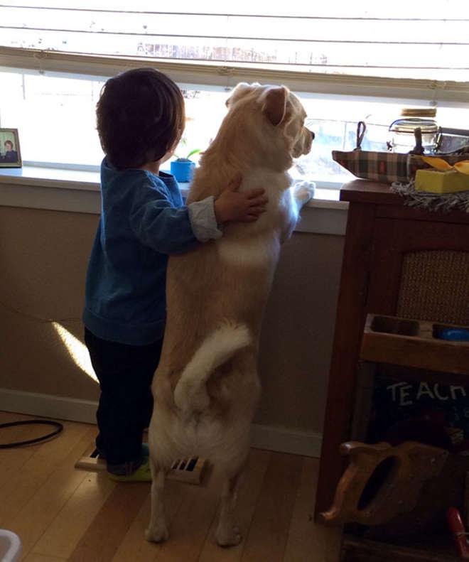 chiens-meilleurs-amis-de-l-homme-7-L.jpg