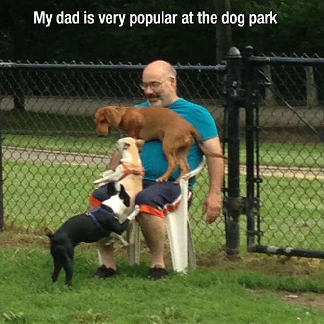 chiens-meilleurs-amis-de-l-homme-8-L.jpg