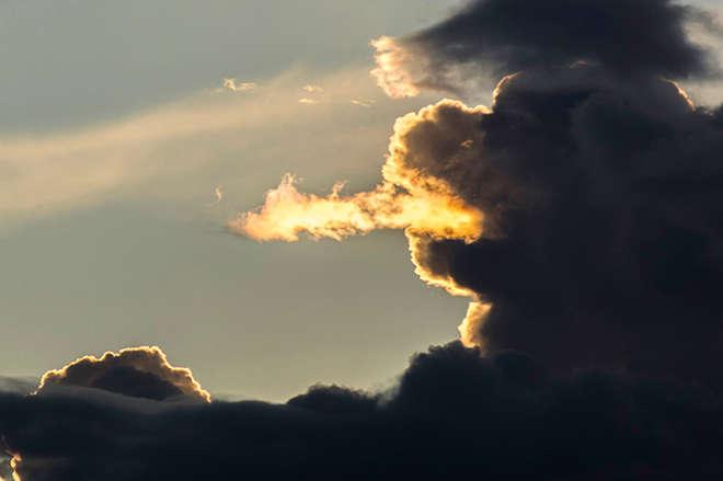 timing-parfait-photos-droles-bon-moment-19-L.jpg