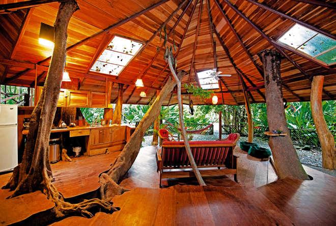 Cabane Du Monde les photos de la plus grande cabane en forêt au monde - breakforbuzz
