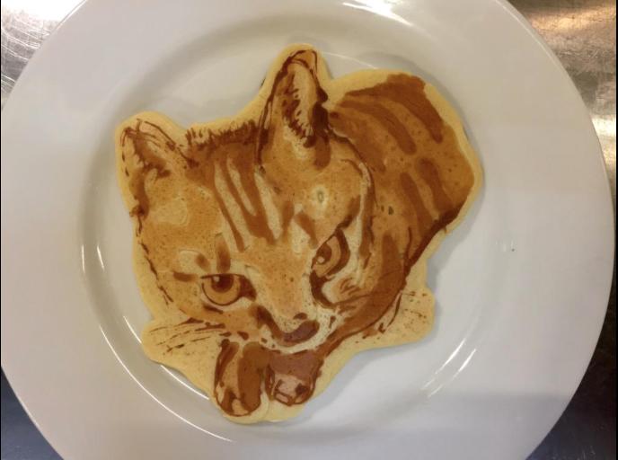 pancake-art-photo-chat