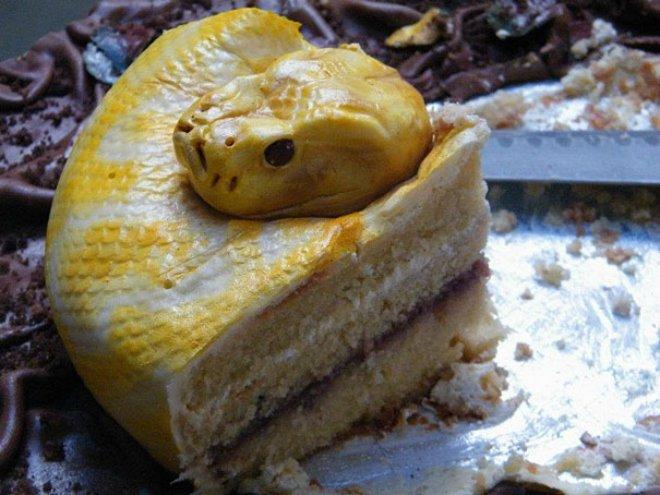 cake snake 660 2