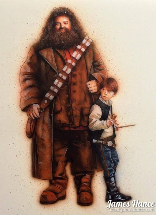 harry-potter-and-star-wars-mashup-art-by-james-ha