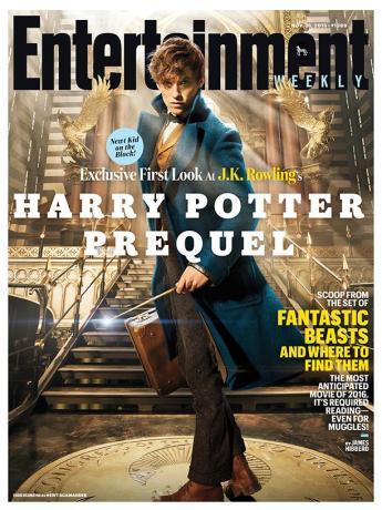 Harry Potter Les animaux fantastiques