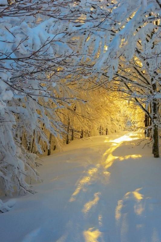Soleil-sur-la-neige