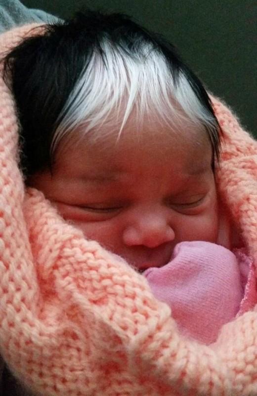 bebe-cheveux-blancs4-610x938