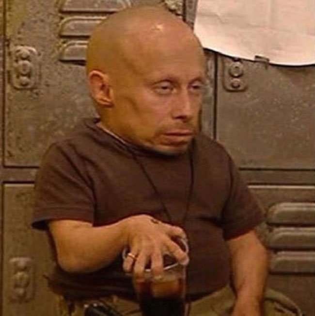 Verne-Troyer
