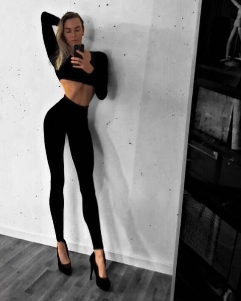 jambes les plus longues