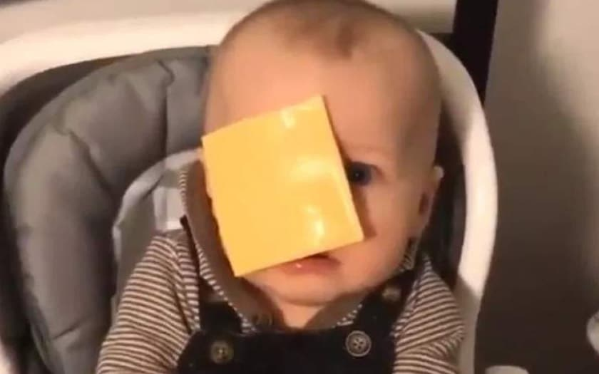 The Cheese Challenge 2019