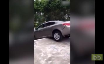 Un conducteur tente de descendre des escaliers en voiture...