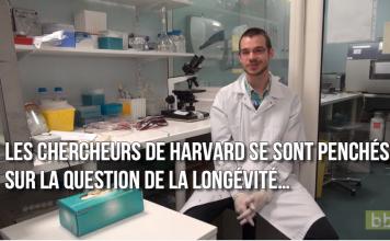 Harvard donne les 5 meilleures habitudes de vie pour vivre longtemps et en bonne santé