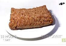 Il filme pendant 27 jours la décomposition d'un morceau de viande hachée