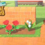 Animal Crossing New Horizons - Avoir du muguet sur votre île.
